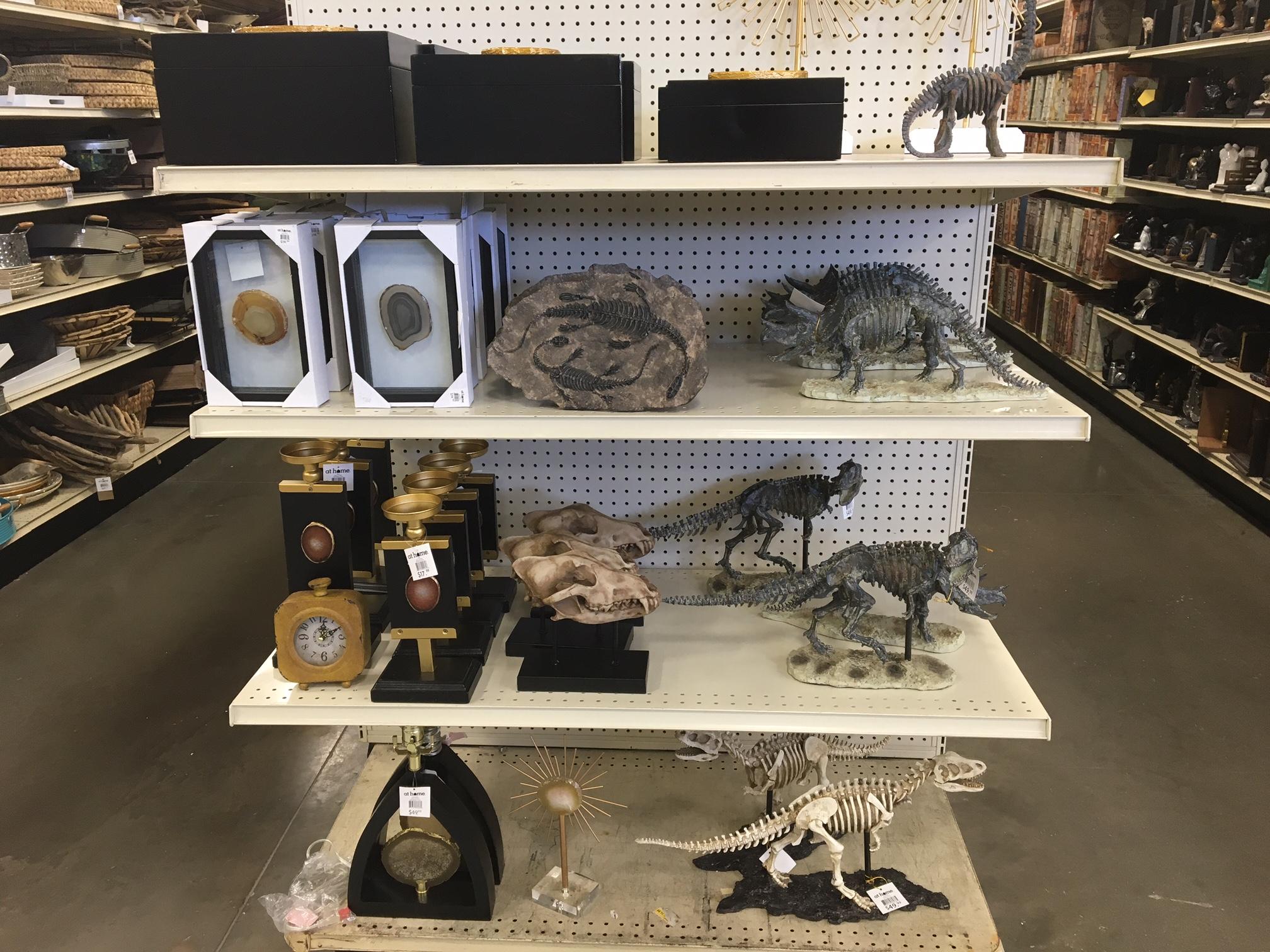 animal artifacts